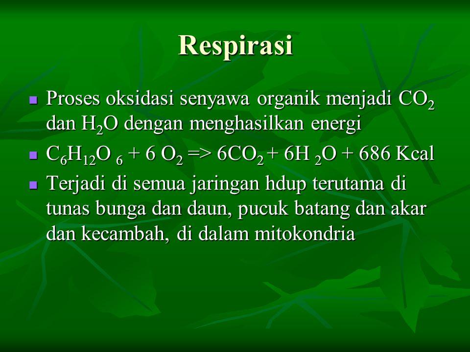 Respirasi Proses oksidasi senyawa organik menjadi CO2 dan H2O dengan menghasilkan energi. C6H12O 6 + 6 O2 => 6CO2 + 6H 2O + 686 Kcal.