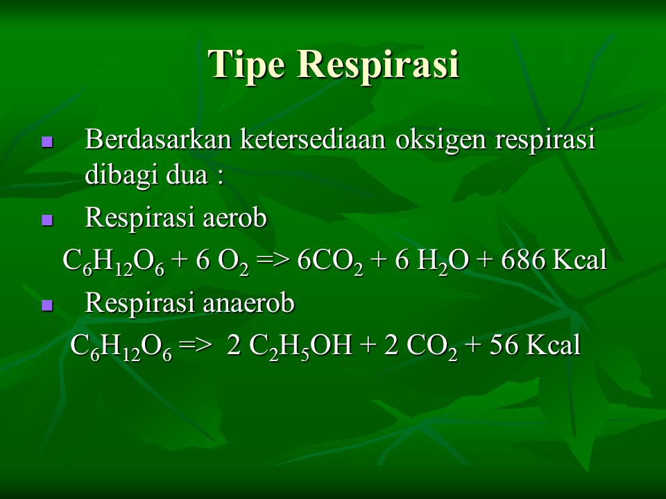 Tipe Respirasi Berdasarkan ketersediaan oksigen respirasi dibagi dua :