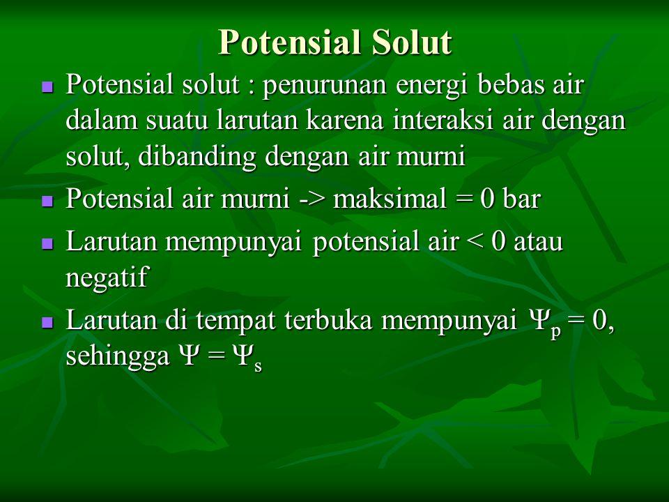 Potensial Solut Potensial solut : penurunan energi bebas air dalam suatu larutan karena interaksi air dengan solut, dibanding dengan air murni.