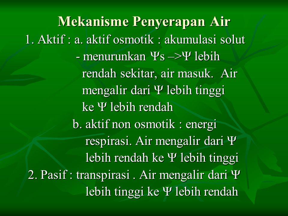 Mekanisme Penyerapan Air