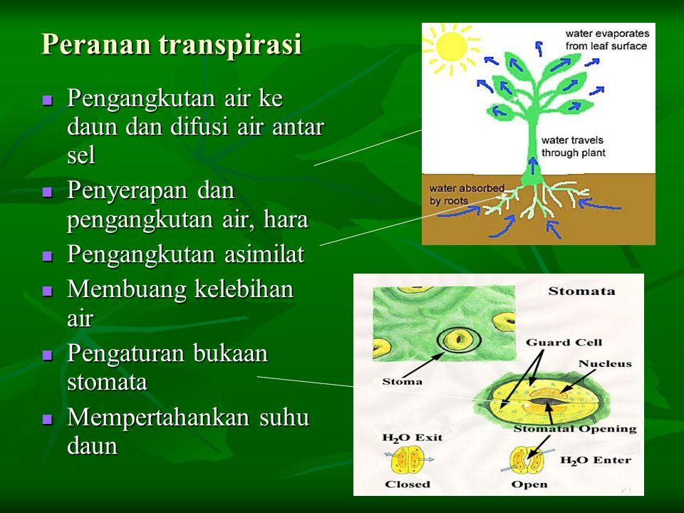 Peranan transpirasi Pengangkutan air ke daun dan difusi air antar sel