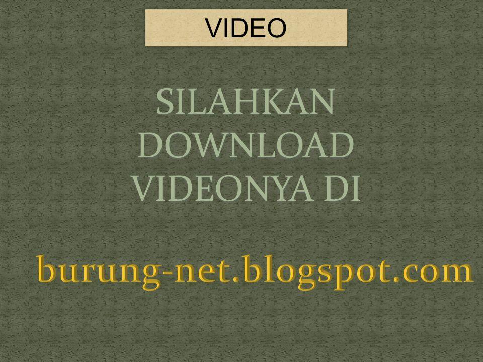 SILAHKAN DOWNLOAD VIDEONYA DI