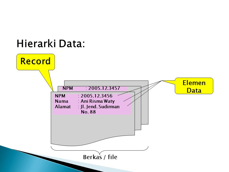 Hierarki Data: Record Elemen Data Berkas / file NPM : 2005.12.3457
