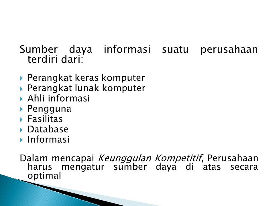 Sumber daya informasi suatu perusahaan terdiri dari: