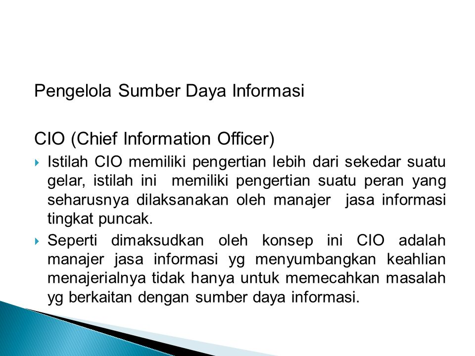 Pengelola Sumber Daya Informasi CIO (Chief Information Officer)
