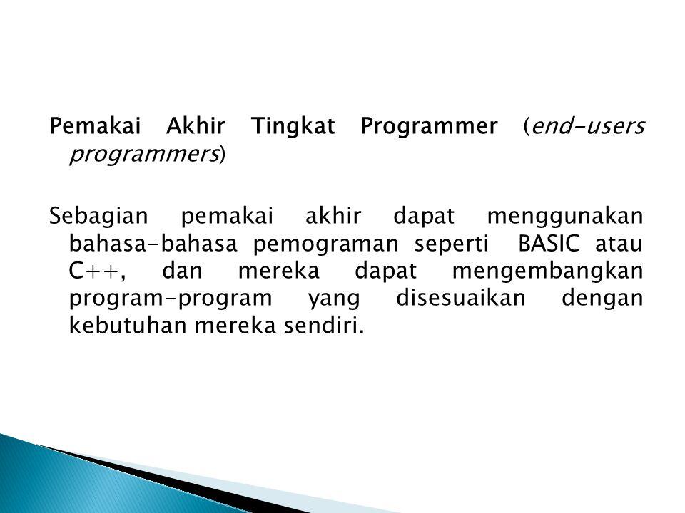 Pemakai Akhir Tingkat Programmer (end-users programmers) Sebagian pemakai akhir dapat menggunakan bahasa-bahasa pemograman seperti BASIC atau C++, dan mereka dapat mengembangkan program-program yang disesuaikan dengan kebutuhan mereka sendiri.