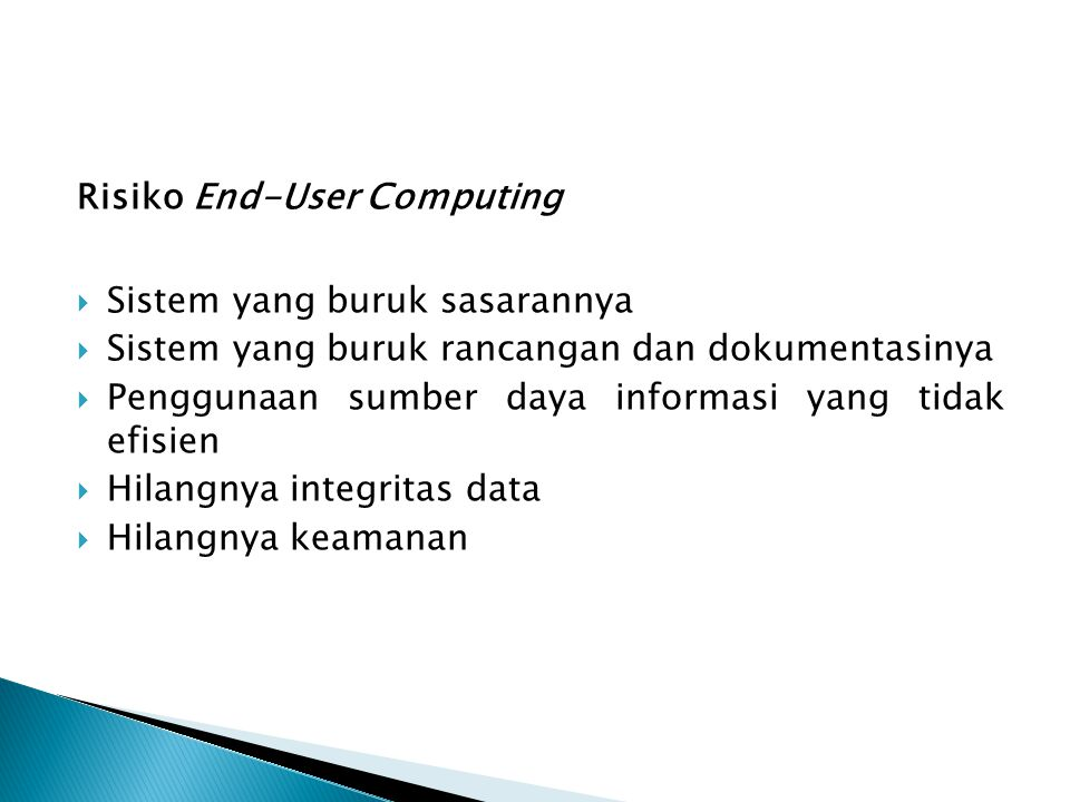 Risiko End-User Computing