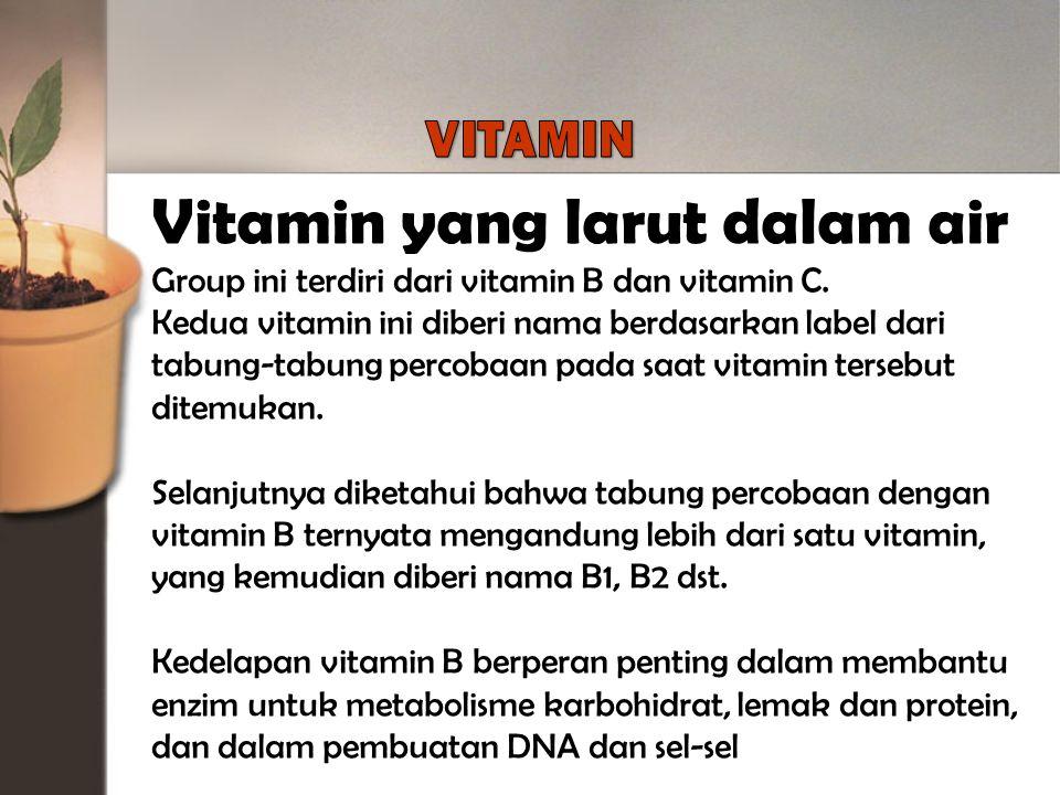 Vitamin yang larut dalam air