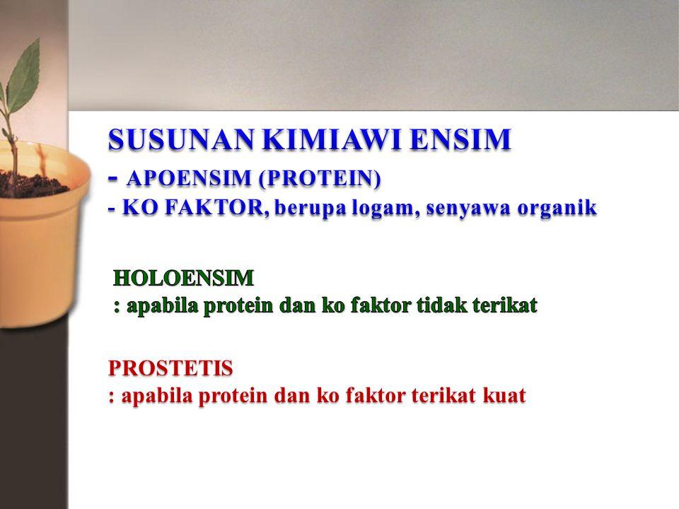 SUSUNAN KIMIAWI ENSIM - APOENSIM (PROTEIN)