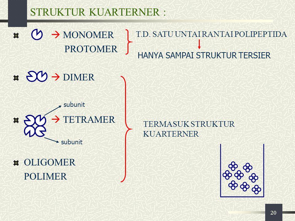 STRUKTUR KUARTERNER :  MONOMER PROTOMER  DIMER  TETRAMER OLIGOMER