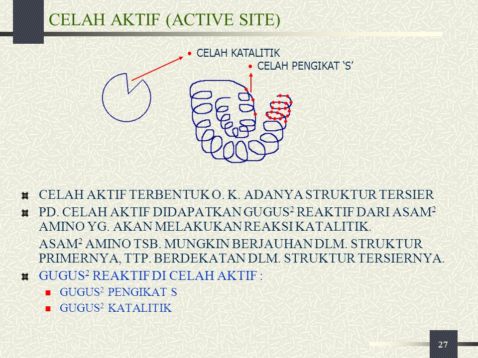 CELAH AKTIF (ACTIVE SITE)