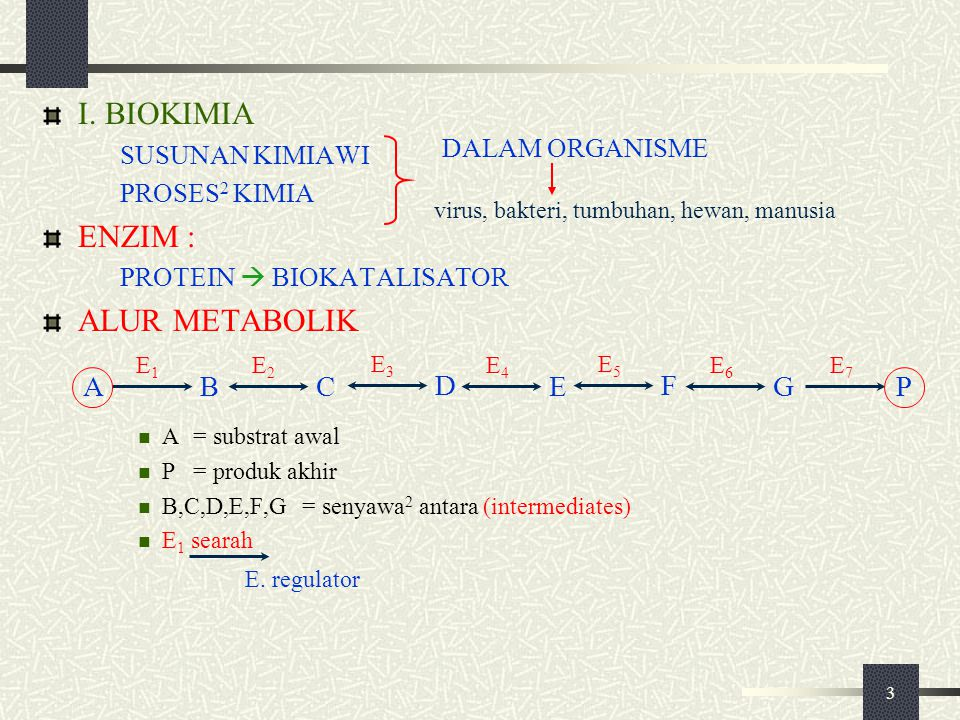 I. BIOKIMIA ENZIM : ALUR METABOLIK A B C D E F G P SUSUNAN KIMIAWI