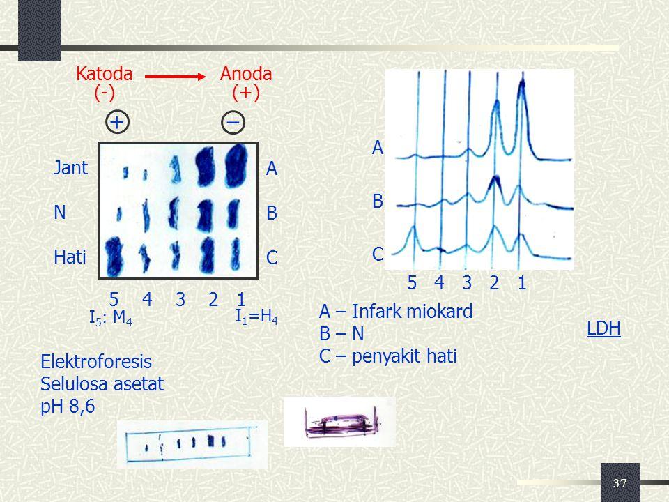 + – 5 4 3 2 1 A B C Jant N Hati Katoda (-) Anoda (+) A B C 5 4 3 2 1