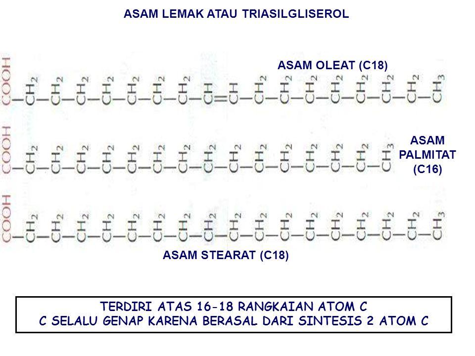 ASAM LEMAK ATAU TRIASILGLISEROL