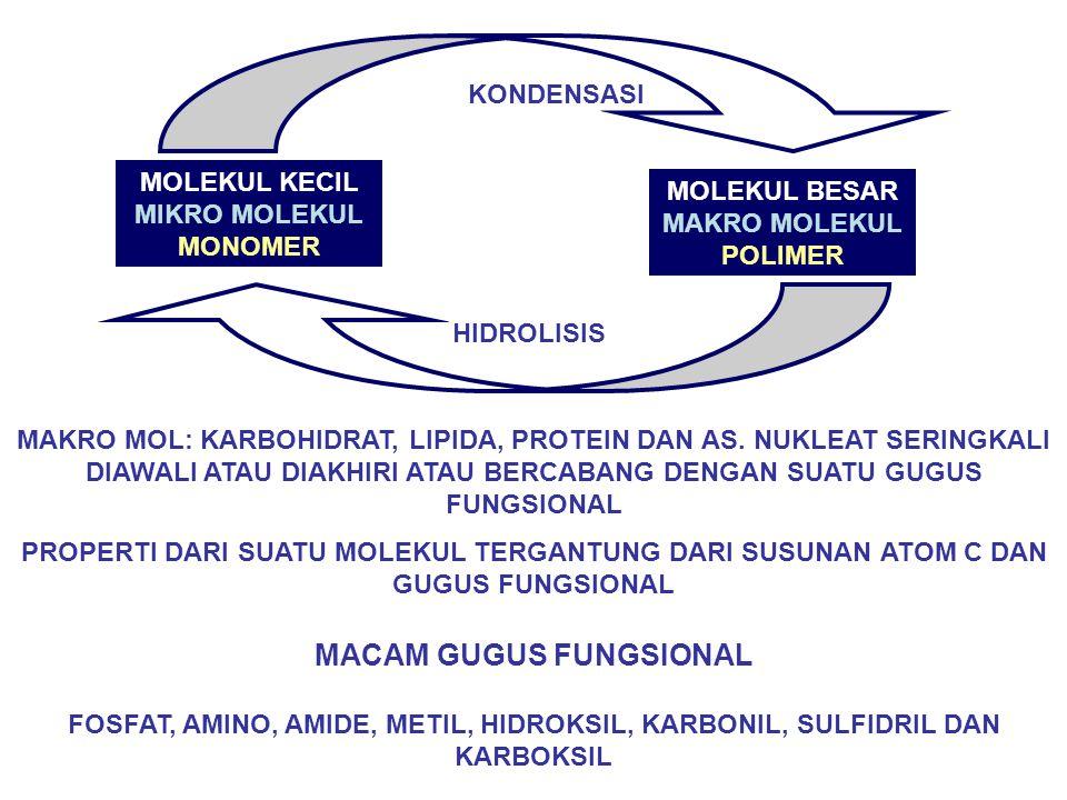 MACAM GUGUS FUNGSIONAL