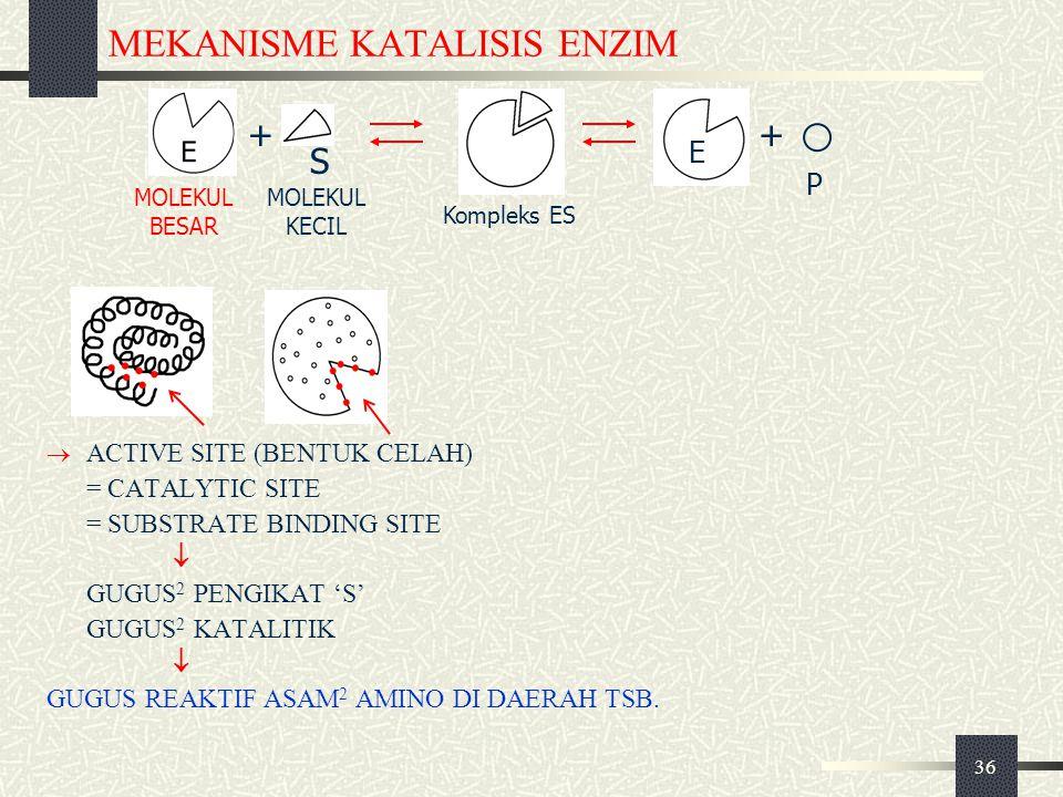 MEKANISME KATALISIS ENZIM