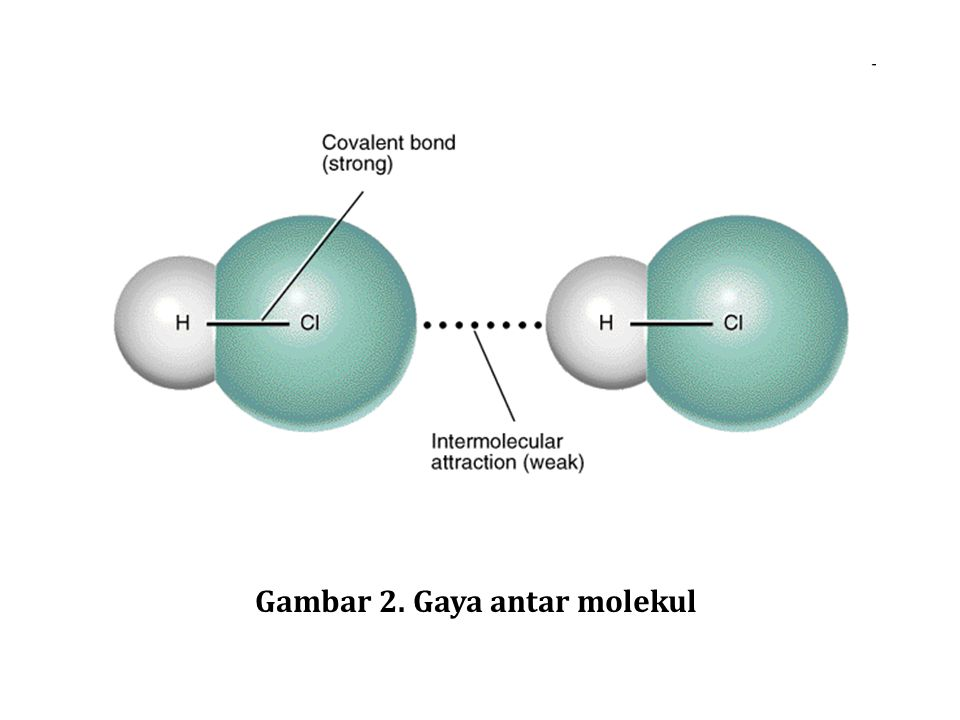 Gambar 2. Gaya antar molekul