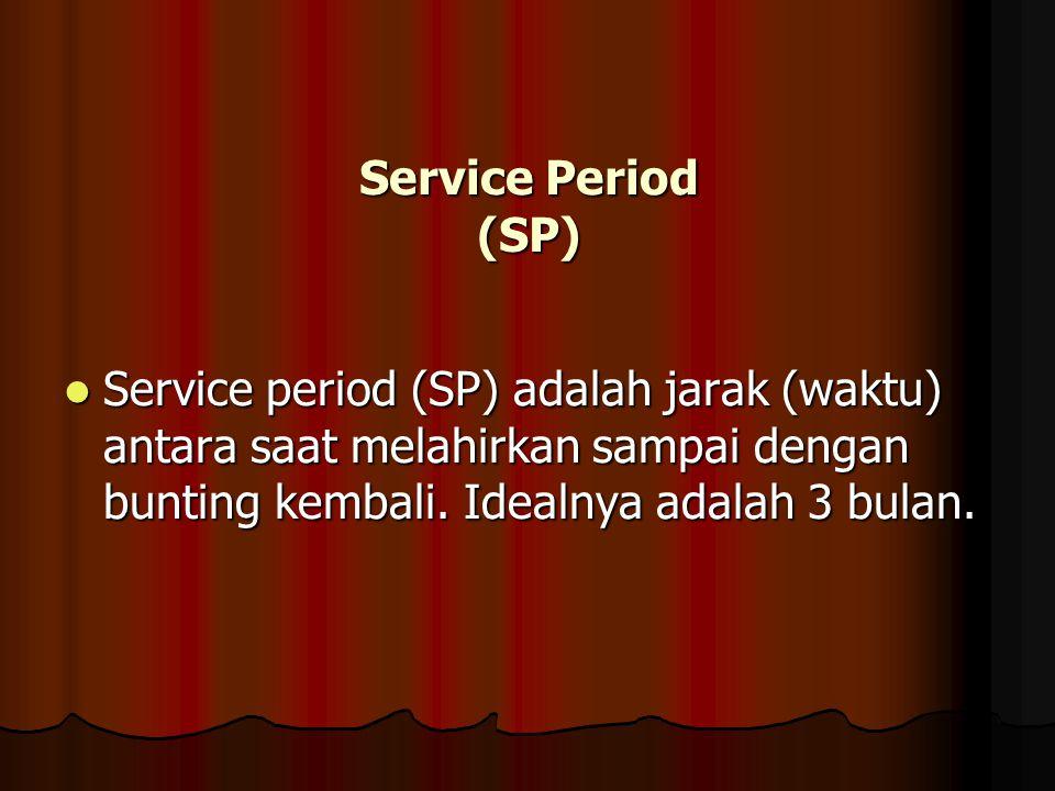 Service Period (SP) Service period (SP) adalah jarak (waktu) antara saat melahirkan sampai dengan bunting kembali.
