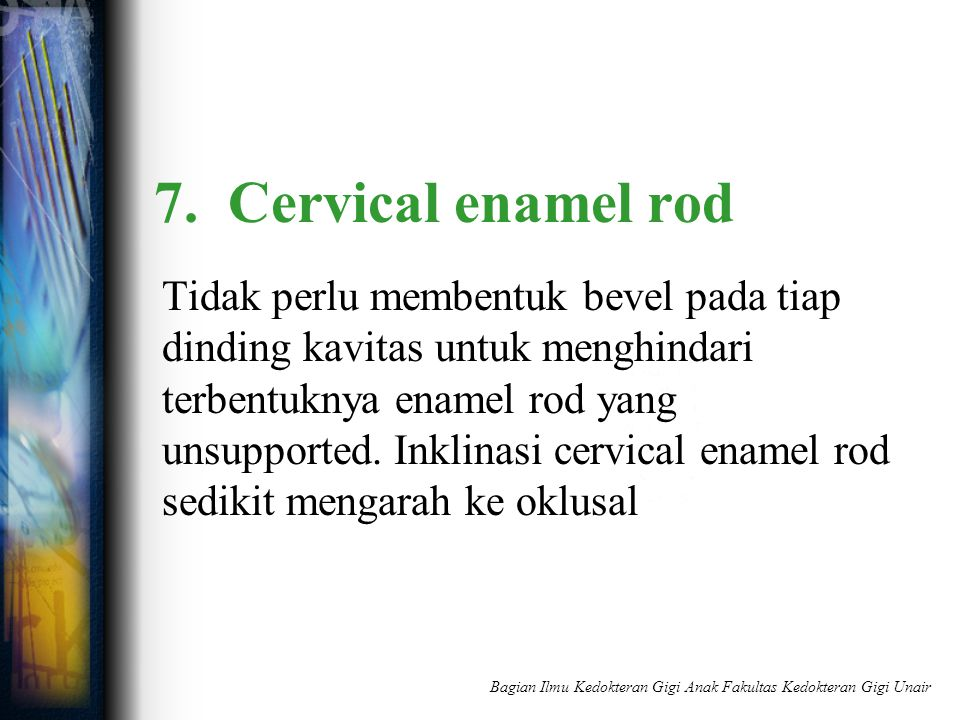 7. Cervical enamel rod