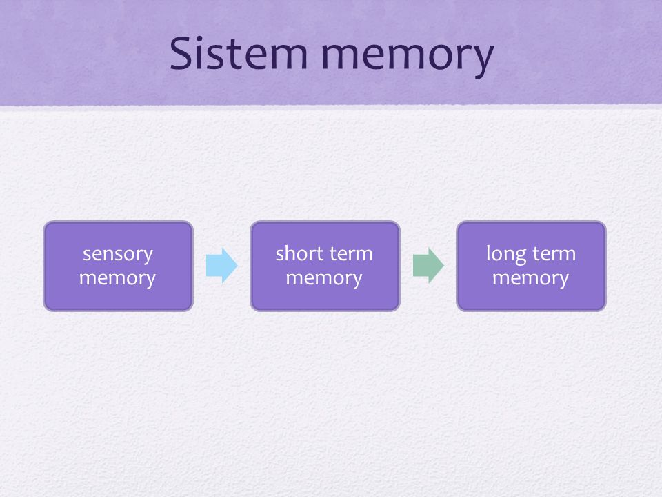 Sistem memory sensory memory short term memory long term memory