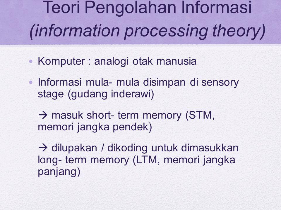 Teori Pengolahan Informasi (information processing theory)