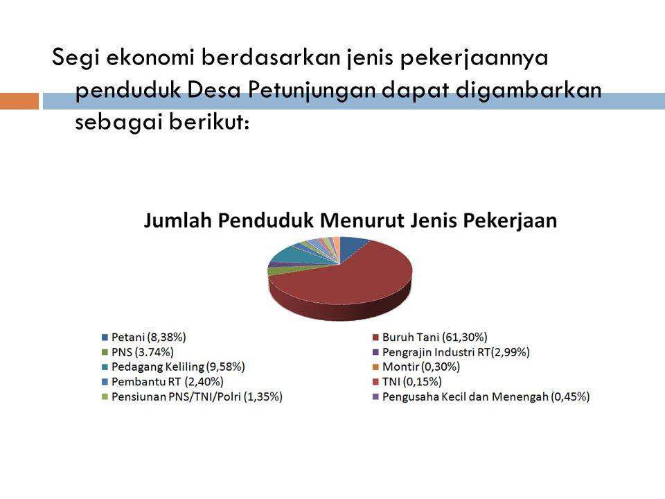 Segi ekonomi berdasarkan jenis pekerjaannya penduduk Desa Petunjungan dapat digambarkan sebagai berikut: