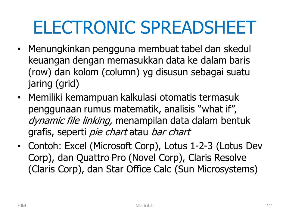 ELECTRONIC SPREADSHEET