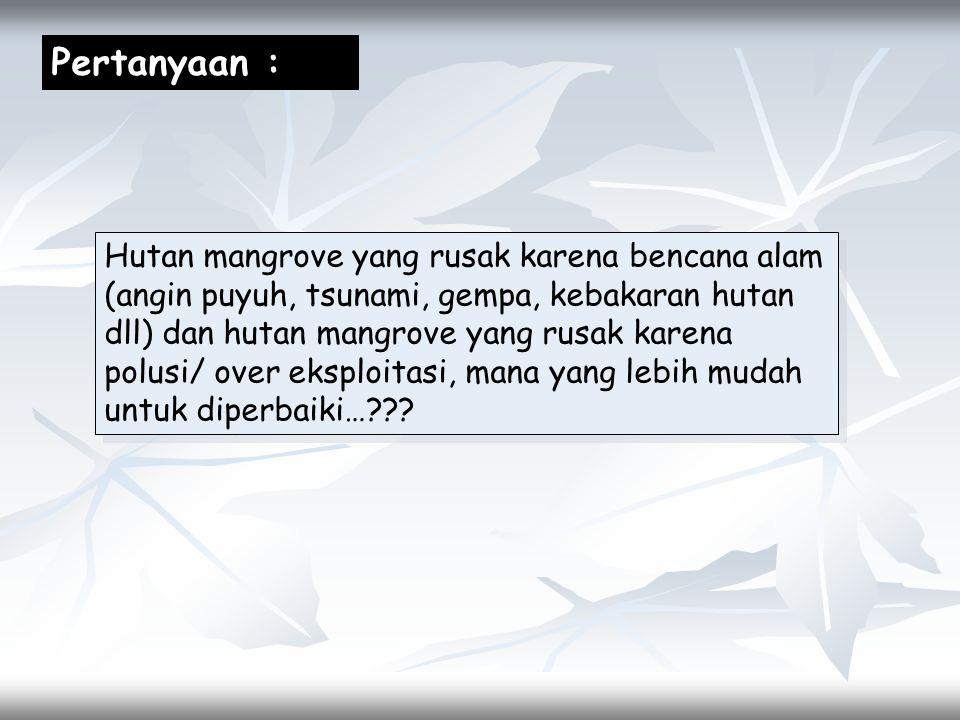 Pertanyaan :