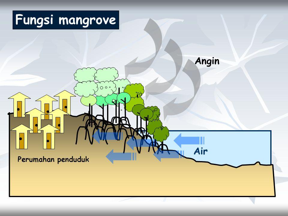 Fungsi mangrove Angin Air Perumahan penduduk