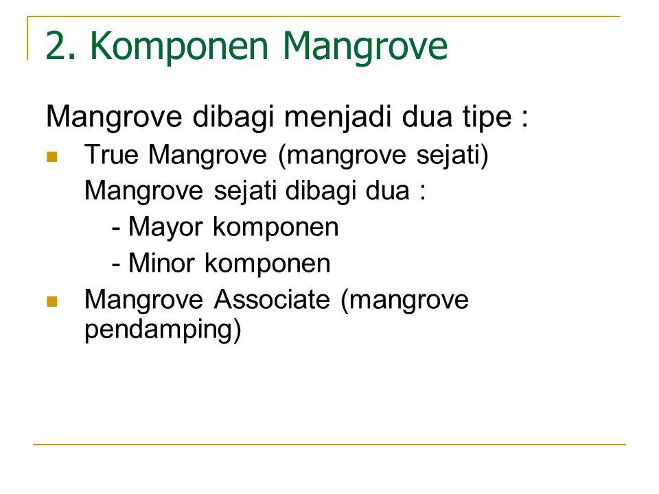 2. Komponen Mangrove Mangrove dibagi menjadi dua tipe :