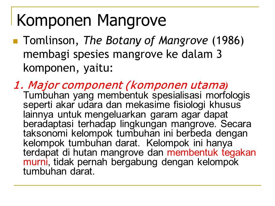 Komponen Mangrove Tomlinson, The Botany of Mangrove (1986) membagi spesies mangrove ke dalam 3 komponen, yaitu: