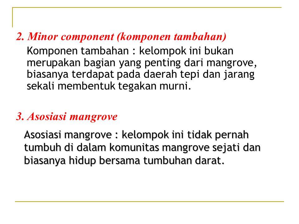 2. Minor component (komponen tambahan)