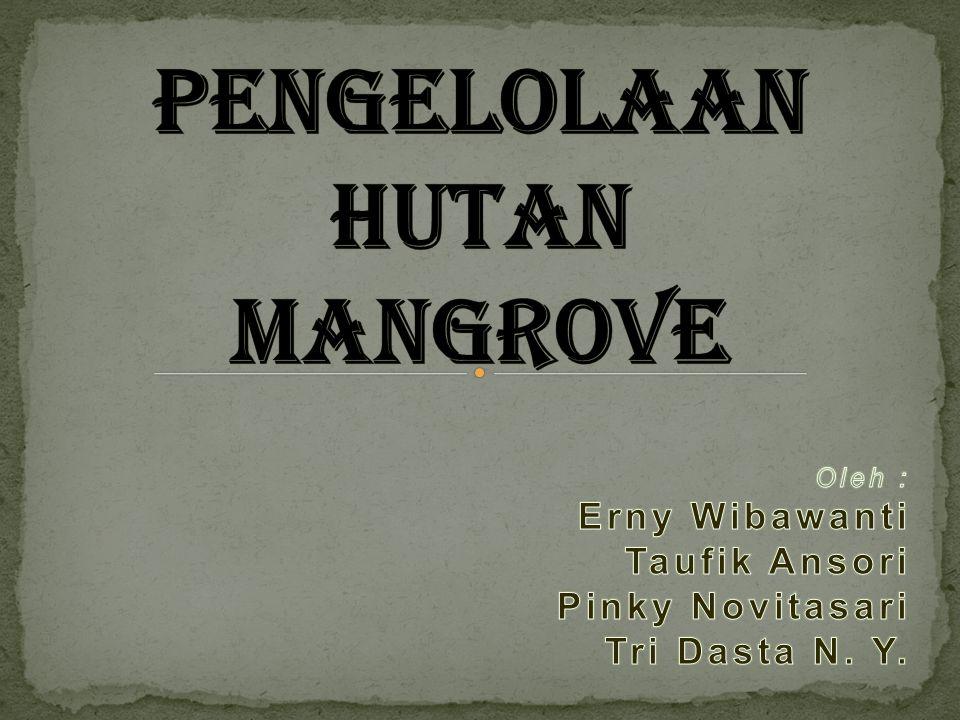 PENGELOLAAN HUTAN MANGROVE