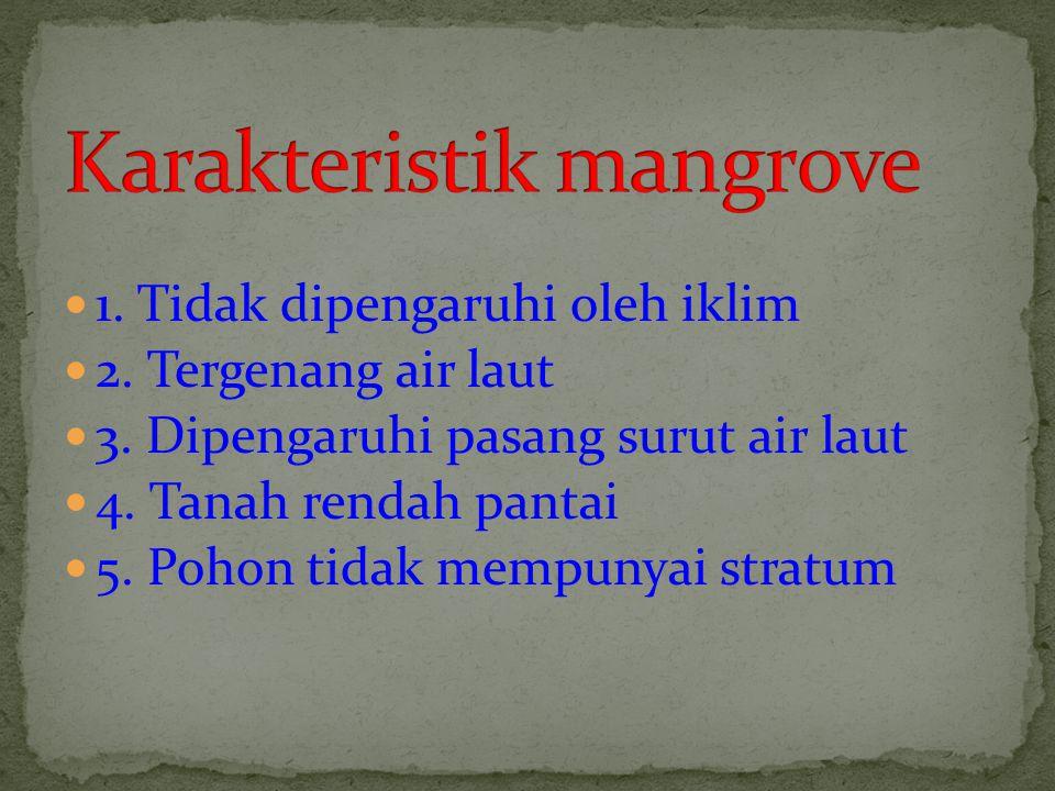Karakteristik mangrove