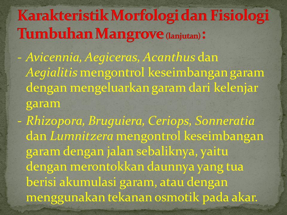 Karakteristik Morfologi dan Fisiologi Tumbuhan Mangrove (lanjutan) :