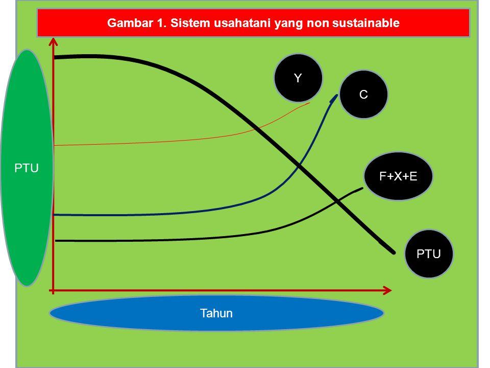 Gambar 1. Sistem usahatani yang non sustainable