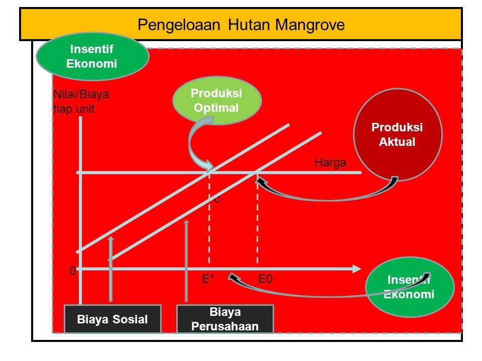 Pengeloaan Hutan Mangrove