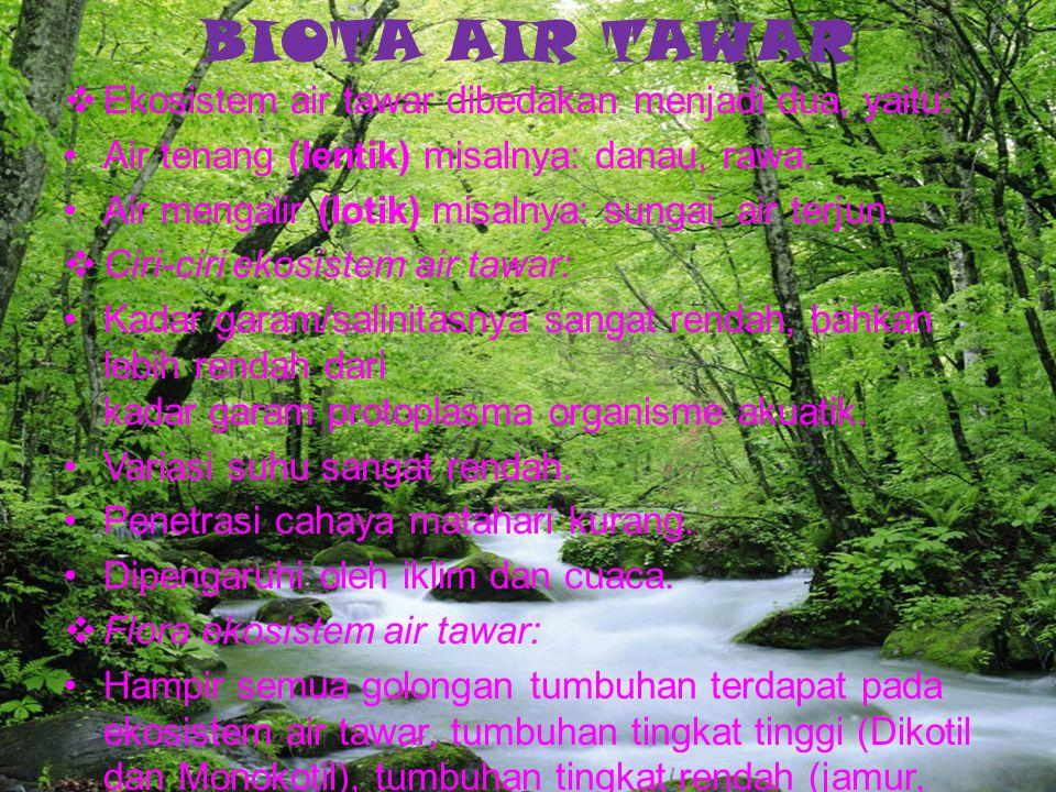 BIOTA AIR TAWAR Ekosistem air tawar dibedakan menjadi dua, yaitu: