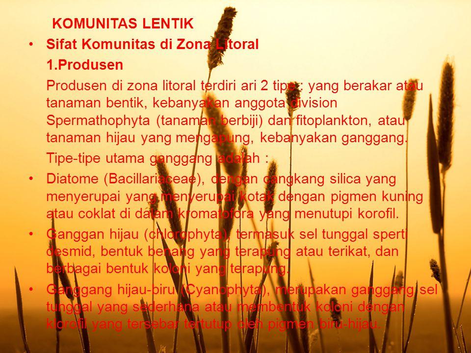 KOMUNITAS LENTIK Sifat Komunitas di Zona Litoral. 1.Produsen.