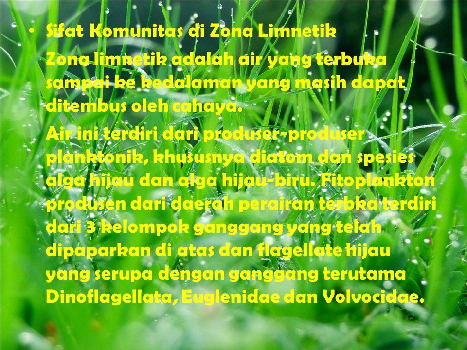 Sifat Komunitas di Zona Limnetik