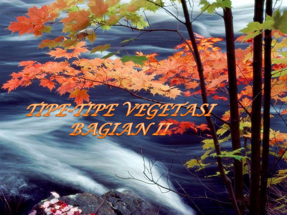 TIPE-TIPE VEGETASI BAGIAN II