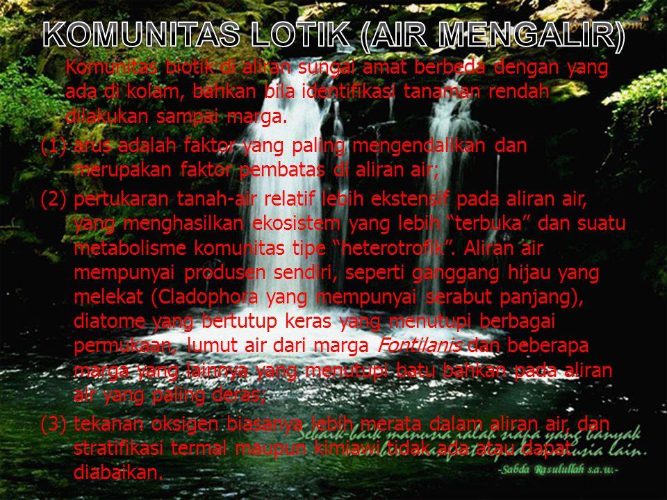KOMUNITAS LOTIK (AIR MENGALIR)
