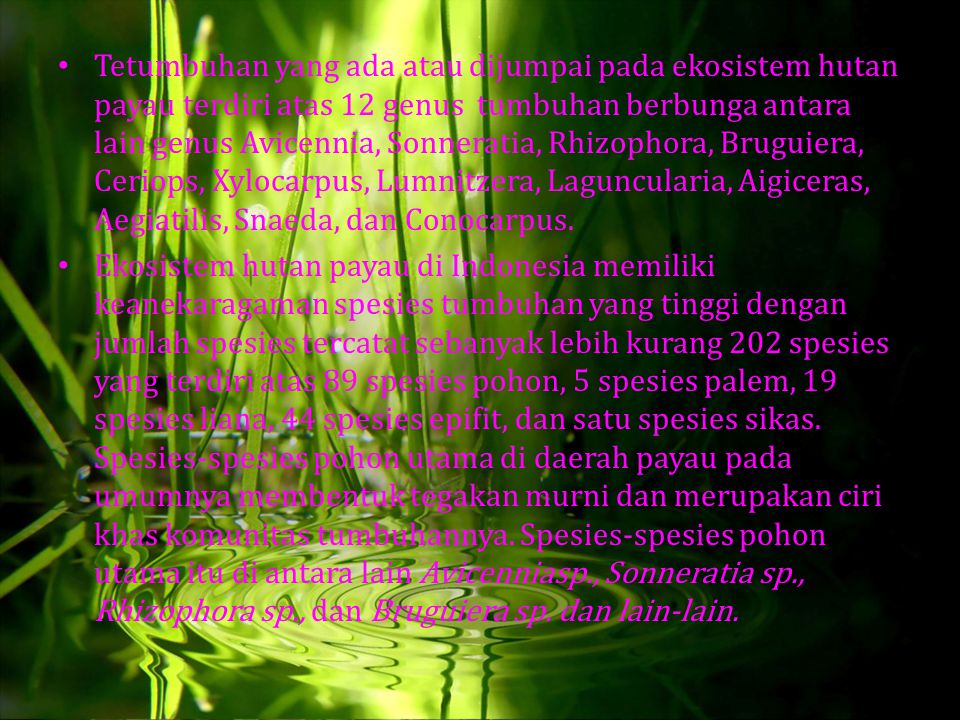 Tetumbuhan yang ada atau dijumpai pada ekosistem hutan payau terdiri atas 12 genus tumbuhan berbunga antara lain genus Avicennia, Sonneratia, Rhizophora, Bruguiera, Ceriops, Xylocarpus, Lumnitzera, Laguncularia, Aigiceras, Aegiatilis, Snaeda, dan Conocarpus.