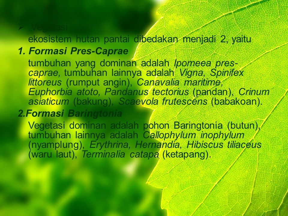Vegetasi ekosistem hutan pantai dibedakan menjadi 2, yaitu. 1. Formasi Pres-Caprae.