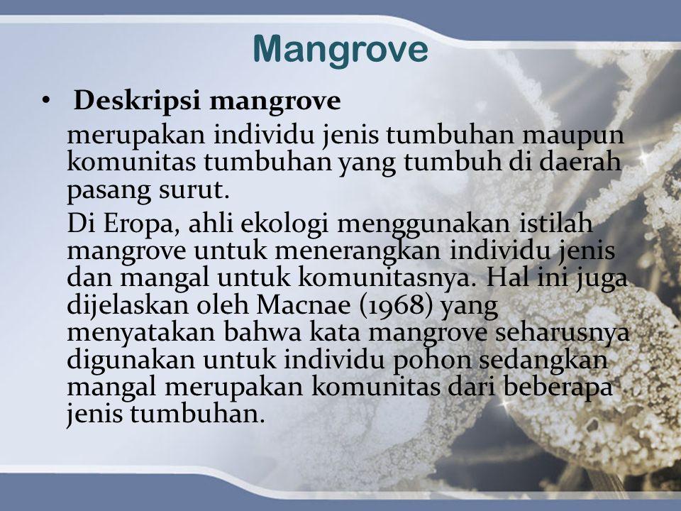 Mangrove Deskripsi mangrove