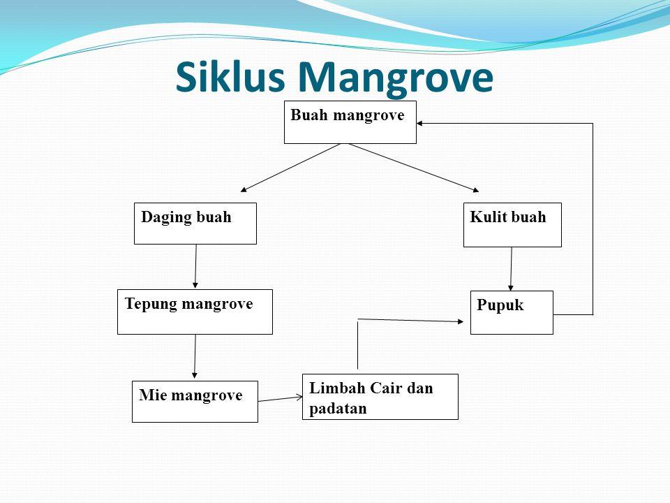 Siklus Mangrove Buah mangrove Kulit buah Tepung mangrove Daging buah