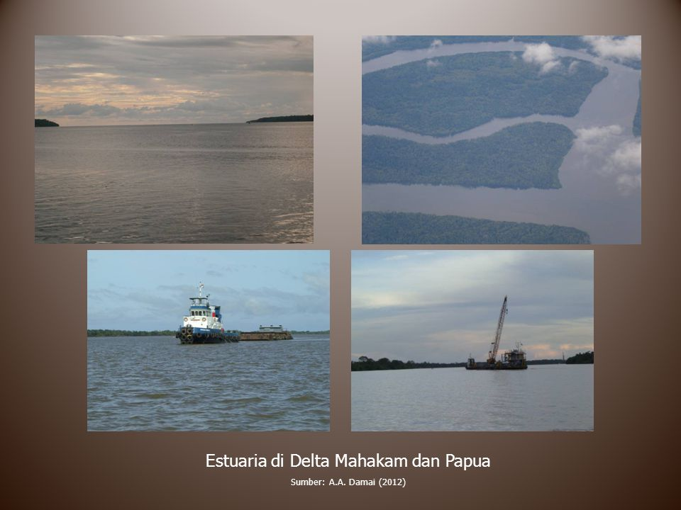 Estuaria di Delta Mahakam dan Papua