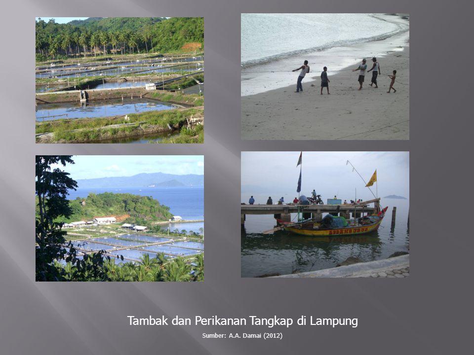 Tambak dan Perikanan Tangkap di Lampung