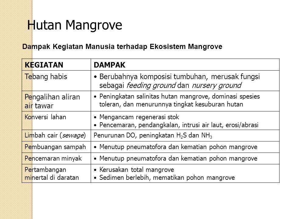 Hutan Mangrove Dampak Kegiatan Manusia terhadap Ekosistem Mangrove