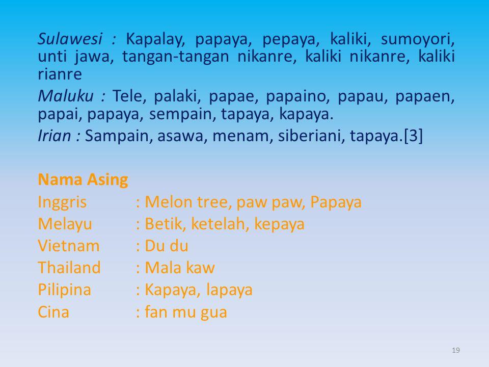 Sulawesi : Kapalay, papaya, pepaya, kaliki, sumoyori, unti jawa, tangan-tangan nikanre, kaliki nikanre, kaliki rianre